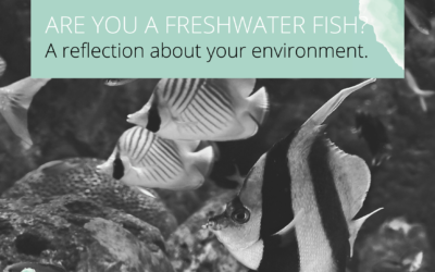 Are you the freshwater fish in the salt water?